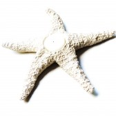 Beach Wedding Table Decorations Centerpieces Starfish Tea Light Votive Candle Holder Home Decor Coastal Cottage Rustic Neutral Natural
