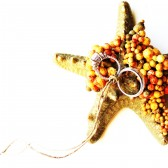 Starfish Ring Bearer Ring Pillow Wedding Ring Holder Beach Destination Wedding Alternative Dish Bowl Plate