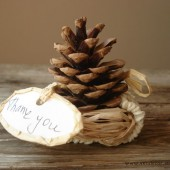 Natural pinecone in nest ornament