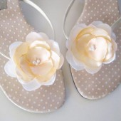 Ivory & Peach shoe clips