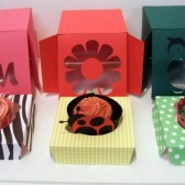 Cupcake Box with Insert