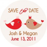 Kissing Birds, Save the Date