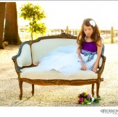 Papillon Picnic Dress Flower Girl