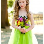 Limeade Strapless Damask Tutu Dress