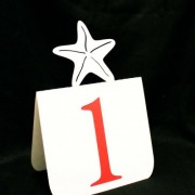 Starfish Table Numbers