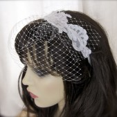 Bridcage Veil with Alencon Lace Headband
