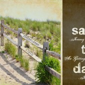 Beach Fence Save the Date