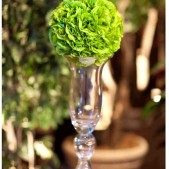 Chartreuse Pomander Ball Centerpiece Rental