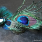 Peacock Feather and Crystal Hair Clip