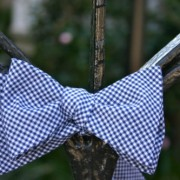 Navy Checked Bow Tie