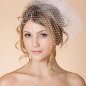 Pink Blush Double Layer Birdcage Veil with Pink Swarovski Rhinestones