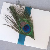 Peacock Pocketfold Invitation Set