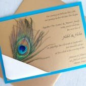 Wrapped Peacock Invitation Set