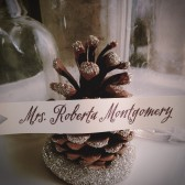 Pinecone Placecard/ Escort Card