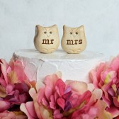Wedding cake topper...Love bird owls... mr mrs