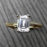 Emerald Cut Forever Brilliant Moissanite Twig Engagement Ring (1ct)