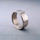 Men's 14K Palladium White Gold Ring