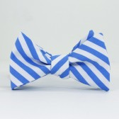 Blue and White Stripe Bow Tie