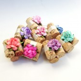 On Sale - Place Card Holders in 22 Custom Colors