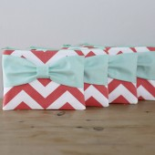 Bridesmaid Gift Set - Coral Chevron Mint Bow