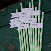 Engagement Party Straws, Personalized Straws with Flags