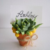 Succulent Escort Card Holder, wedding, reception, Favor, flower, place card