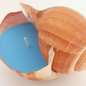 Ocean Blue Soy Seashell Candle