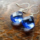 Royal Blue Silver Earrings
