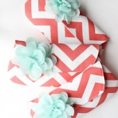 Coral and Mint Chevron Bridesmaid Clutches