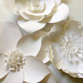 Large Paper Flower Backdrop Photobooth