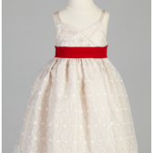 Ruby - Flower Girl Dress
