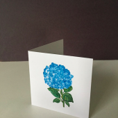 Blue Hydrangeaceae Gift Enclosure