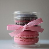 Two French Macaron Party Wedding Favor