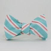 Aqua and Coral Stripe Bow Tie