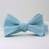Blue and Green Seersucker Bow Tie