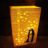 Book Page Lanterns, Book Wedding, Love Story, Book Lovers, Book Luminary Bags