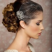 Birdcage veil with rhinestone jeweled comb