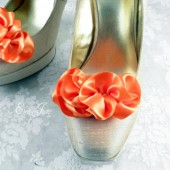 Orange Shoe Clips.