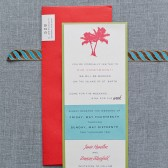 Save the Date Destination Wedding - Tropical Red and Blue - Custom Colors - Jamie and Duncan