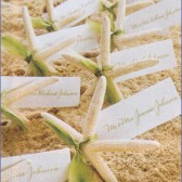 Stafish Place Cards