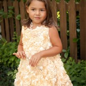 Gold Satin Roses Bubble Dress