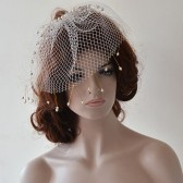 Wedding Birdcage veil with Pearls