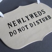 Newlyweds Do Not Disturb Wedding Sign