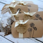 Pillow Box Seed Favors