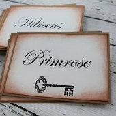 Vintage Inspired Table Numbers - Skeleton Key