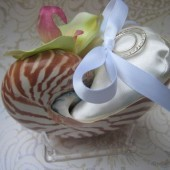 Shell Ring Pillow
