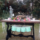 Love mint and lace banner