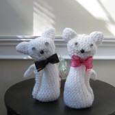 wedding love cats