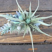 Wedding Hair Accessory, Bridal Hair Comb, Fascinator, Decorative Comb, Succulent, Dusty Miller, Silver Brunia, Bridal Veil, Bride Hair, bridal hair