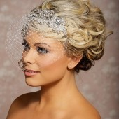 Margot - rhinestone applique birdcage veil